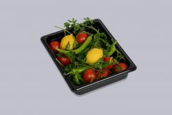 Gastrobakke i sort polycarbonat - GN 1/2