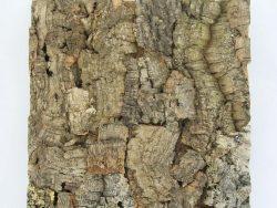 Colorado Natur kork 30x30 cm